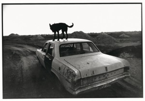 Dusk in Coober Pedy, 1978. Foto: Wenders Images